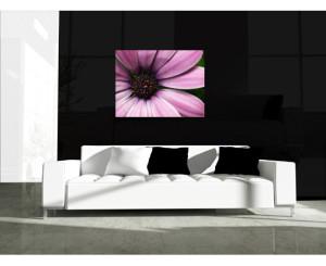 Paarsroze bloem canvas
