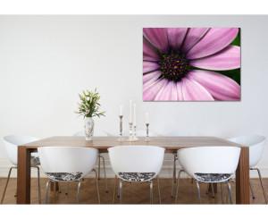 Roze paarse bloem