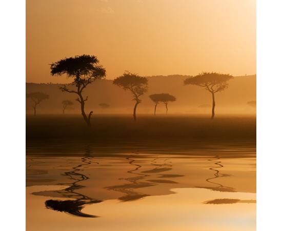 Landschap en vergezichten
