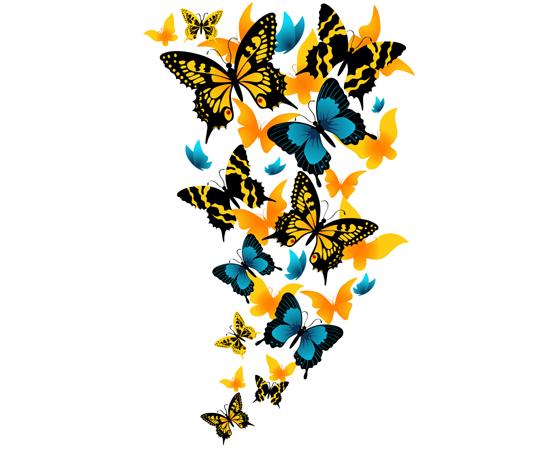 Vlinders canvas doek